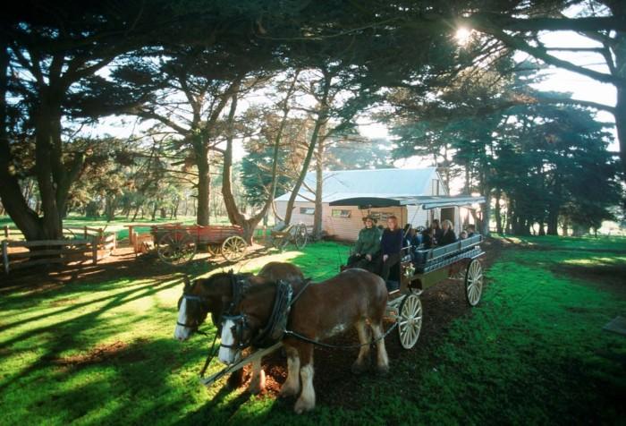 丘吉尔传统农庄参观马车游行