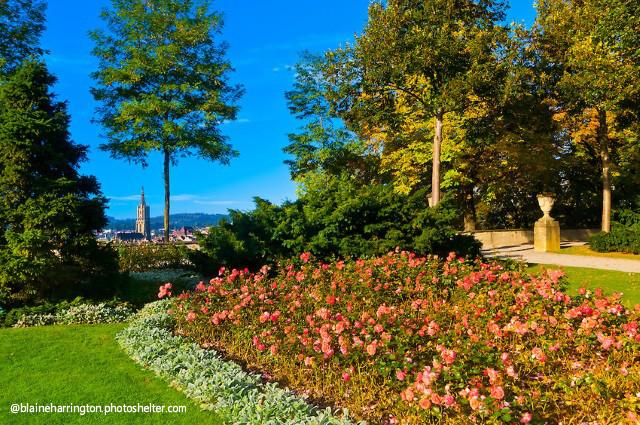 伯尔尼玫瑰园