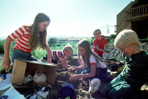 在营地和其他小孩做游戏