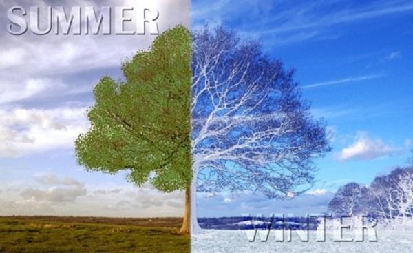 冬天和夏天的差异
