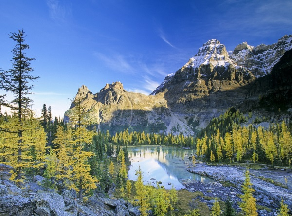 加拿大房车自驾-幽鹤国家公园
