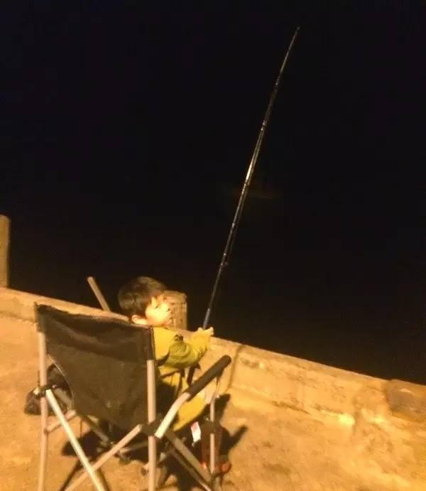 新西兰北岛自驾-在营地附近的码头钓鱼