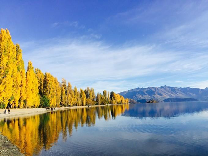 早上的瓦纳卡湖