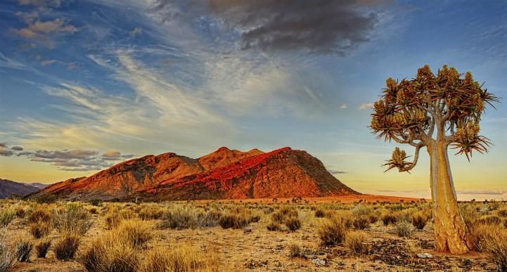 纳米比亚粗粝的美好有一种超尘脱俗的色调,让人难以忘怀。