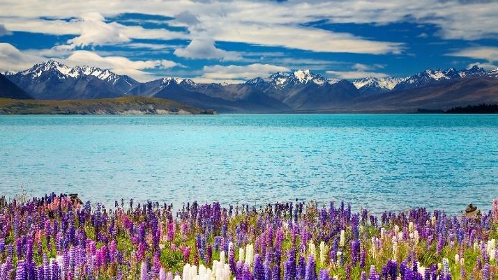 蒂卡波湖的美丽景色