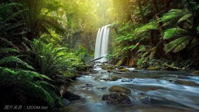 澳大利亚大奥特维国家公园