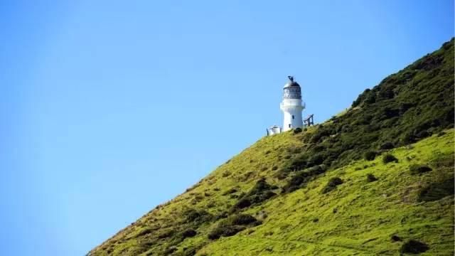 新西兰踏春反季节旅游