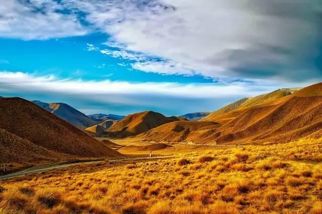新西兰深秋