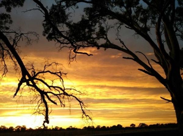 澳大利亚黄昏