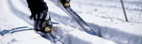 阿拉斯加冬季户外