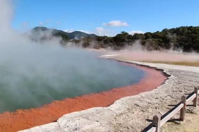 新西兰北岛罗托鲁瓦地热