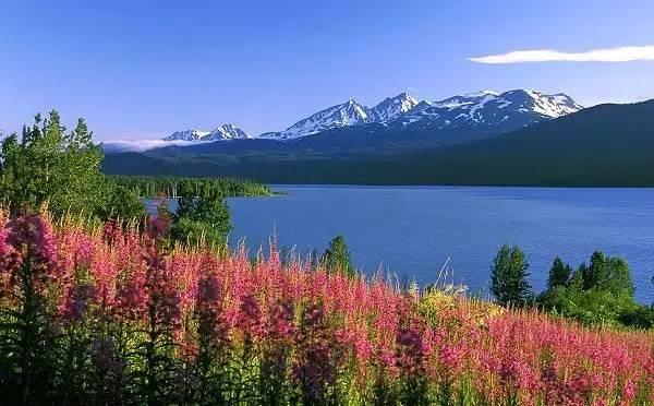 阿拉斯加基奈湖