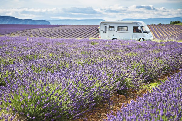 Driving amidst the lavender fields of France is just one of the amazing experiences you can have on a motorhome trip through Europe.