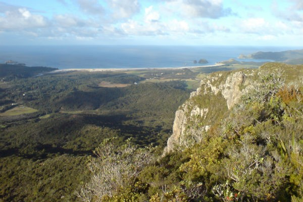 Great Barrier Island is the sixth largest island of New Zealand