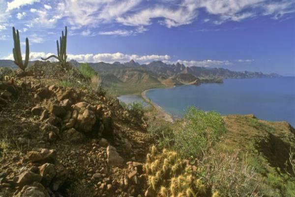 loreto-landscape