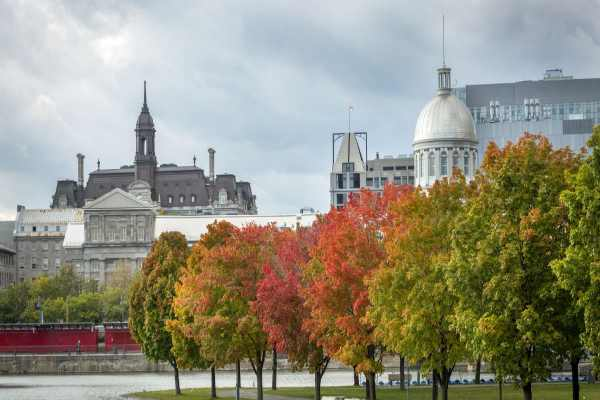 location voiture Montreal