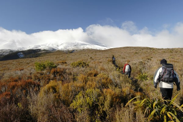 Staying at Whakapapa Holiday Park gives you prime access to both Whakapapa Skifield and Tongariro National Park.