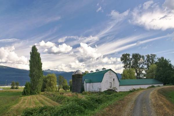 A beautiful farmhouse and barn in Abbotsford.