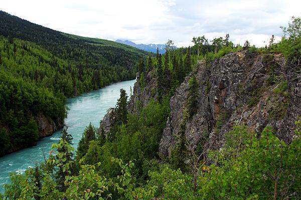 A river runs through the tree-filled mountains of Kenai, Alaska