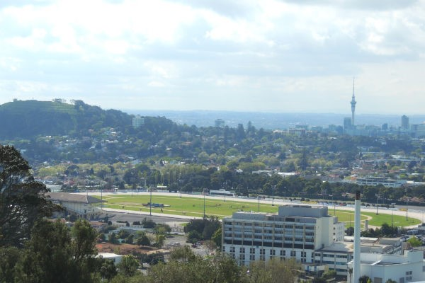 Alexandra Park is virtually around the corner from the Eden Park stadium, where many of the biggest Lions 2017 tour matches are taking place.