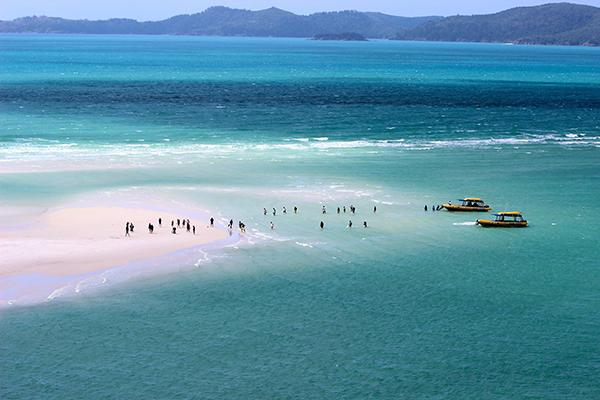 Swimmers gather on the stunning white sands of Whitehaven Beach in the Whitsundays