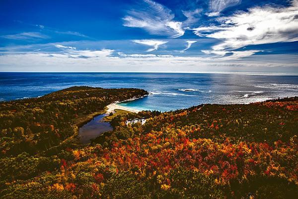 The sea meets the beach and the autumn leaves on a stunning fall day in Bar Harbor, Maine