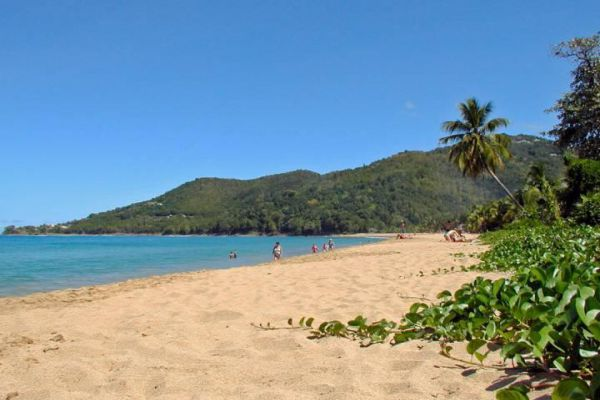 One of the most beautiful beaches of the Basse-Terre (Guadeloupe).