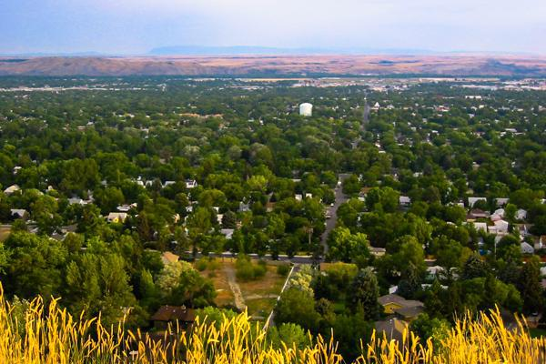 View of tree-filled Billings, Montana from above