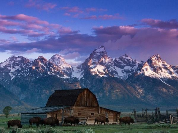 国家公园的美景图片