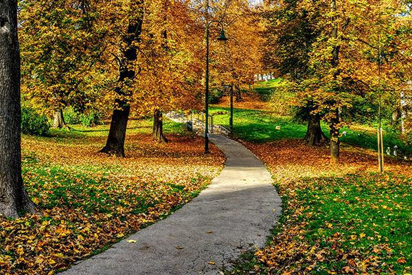 A winding footpath in a park during autumn in Sarajevo, Bosnia and Herzegovina