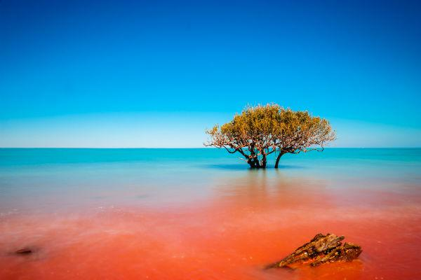 Broome's unforgettable coastline attracts myriad visitors every year.
