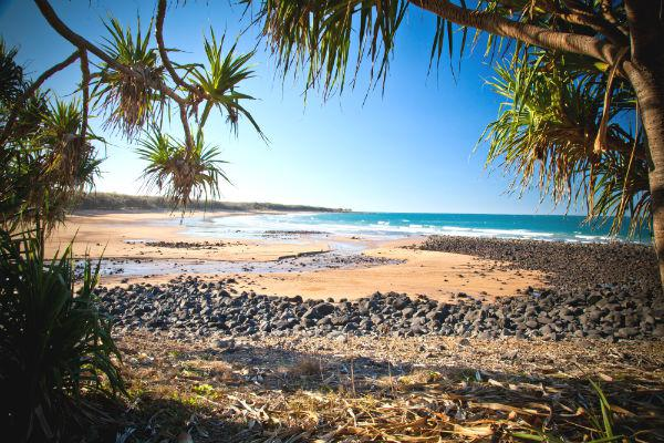 Mon Repos beach is one attraction you won't want to miss while in Bundaberg.