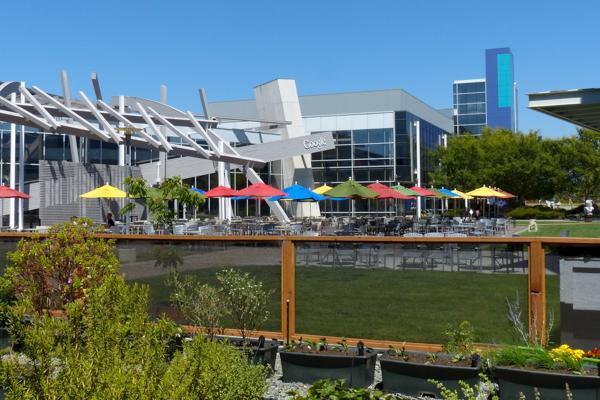 Colourful umbrellas dot the Google headquarters in Palo Alto, California