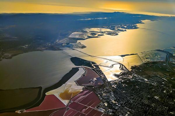 The red algae of Don Edwards San Francisco Bay National Wildlife Refuge sits across the bay from Palo Alto, California