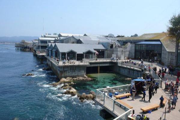 Back view of Monterey Bay Aquarium.
