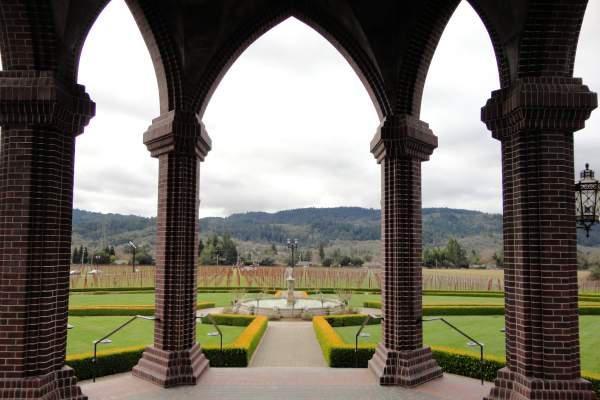 Beautiful backyard with winery & vineyards in Santa Rosa.