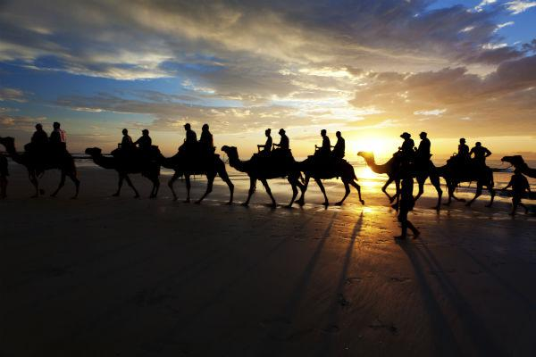 Taking a camel ride along Cable Beach is a well known visitor's rite of passage in Broome.