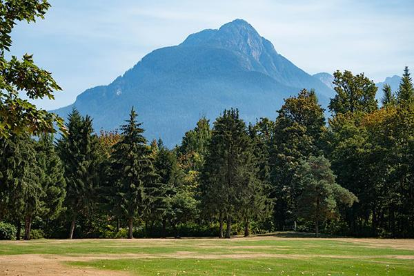 Verdant green grass and trees in front of a mountain in Canada
