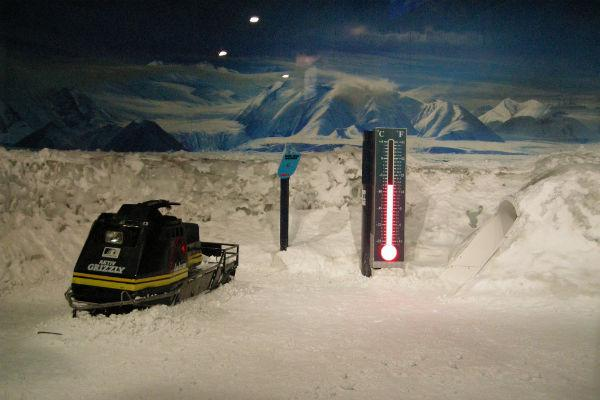 The International Antarctic Centre makes for an excellent outing for the whole family.