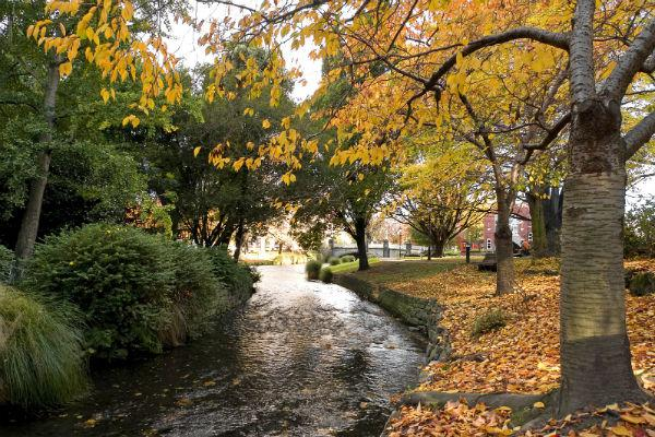 The Avon River runs through Christchurch - try a walk along its banks before heading further afield in your Christchurch motorhome rental.