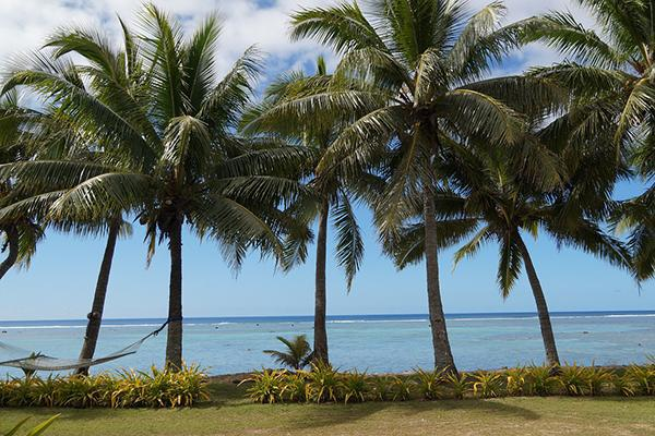 Palm trees (two supporting a hammock) line the shore of a beautiful beach in the Cook Islands