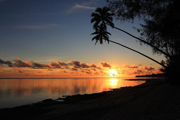 Palm trees stretch out over a beach as the sun sets in Rarotonga