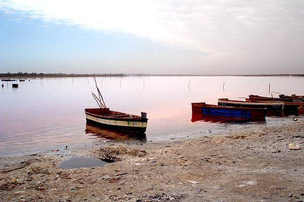 Small wooden boats line the shore of a lake in Senegal