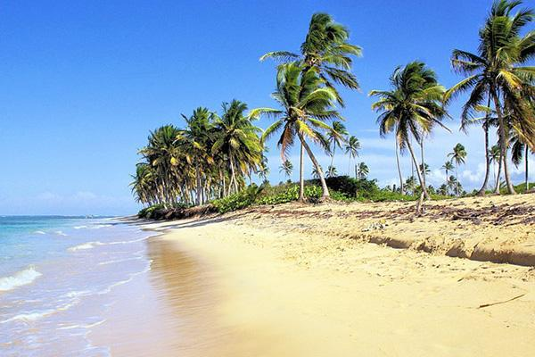 An idyllic tropical beach in Bavaro, Dominican Republic