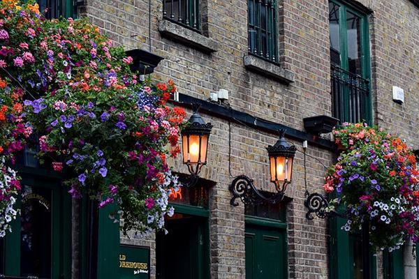 The lamp and flower-adorned façade of a pub, looking inviting in Dublin, Ireland