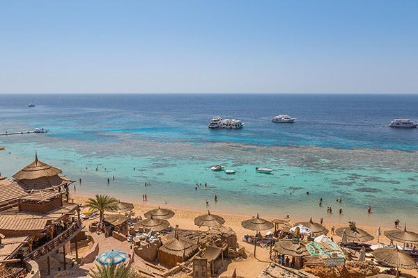 Tourists swim amongst the coral reefs at this resort in Sharm el-Sheikh, Egypt