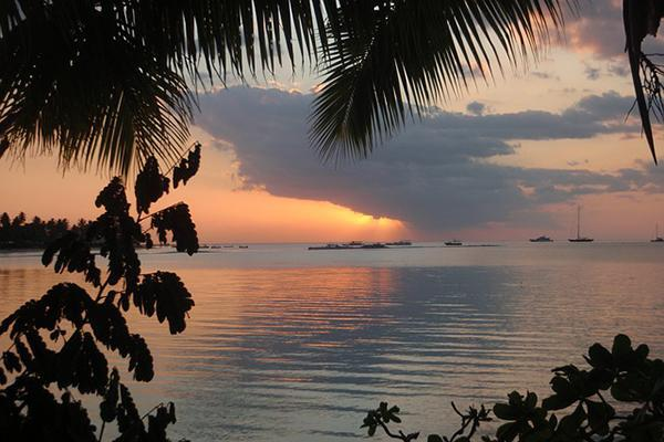 Tropical vegetation frames a photo of a beautiful Fijian sunset over the sea with boats in the distance