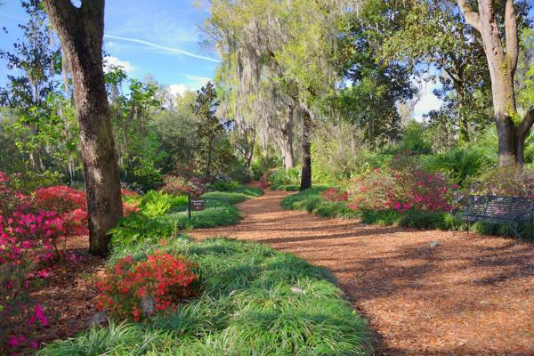 Beautiful flora surround the path at the Bok Tower Gardens in Lakeland, Florida