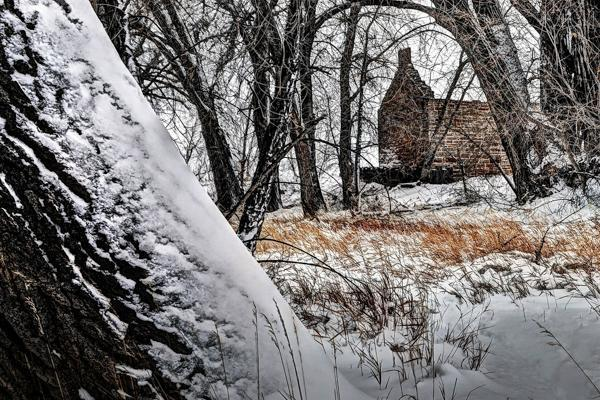 An ancient cabin sits covered in snow during winter near Fort Collins, Colorado