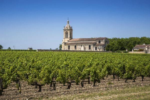 Bordeaux is well known for its wines - make sure you set aside some time to sample the fruits of the vine.